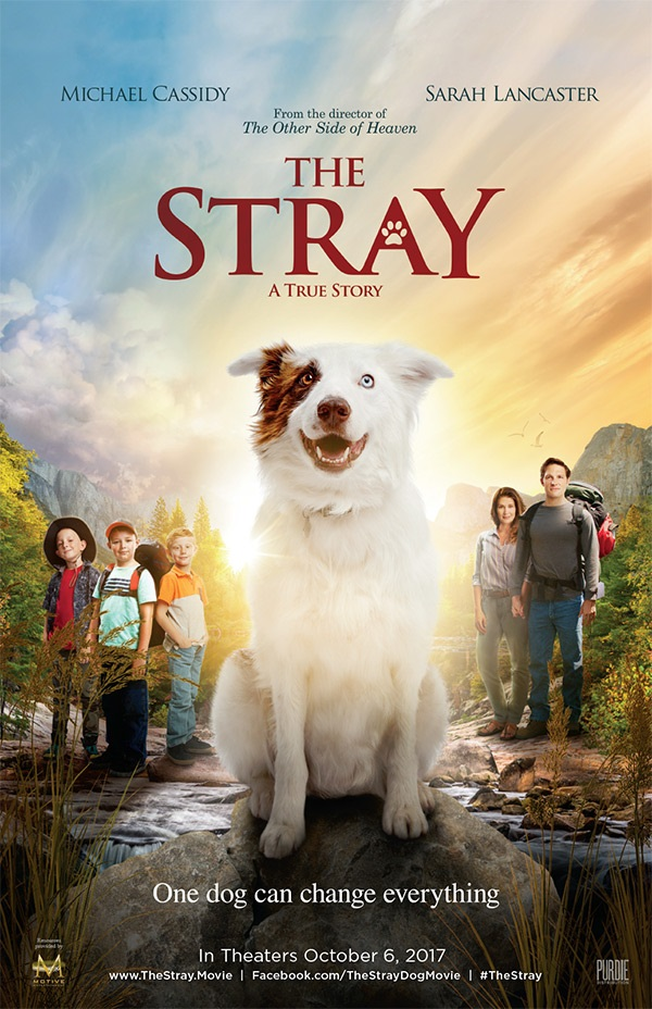 Podcast: The Movie-The Stray