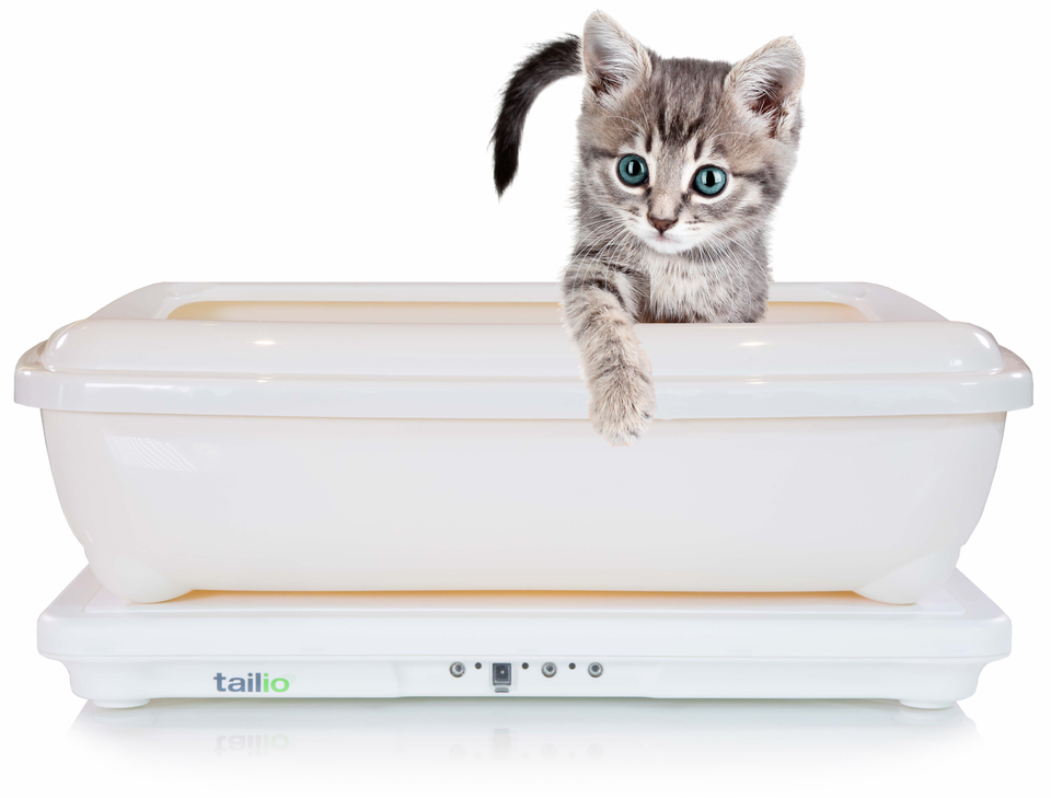 Podcast: New Way to Monitor your Cat's Health